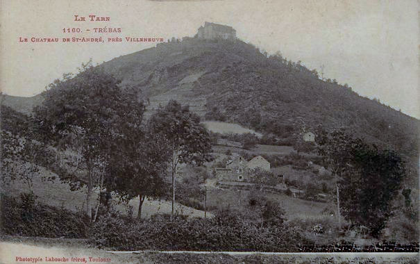 r4418_9_chateau_saint-andre_vue_de_trebas-2.jpg