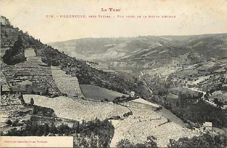 r4429_9_vue_sur_la_vallee_du_tarn-2.jpg